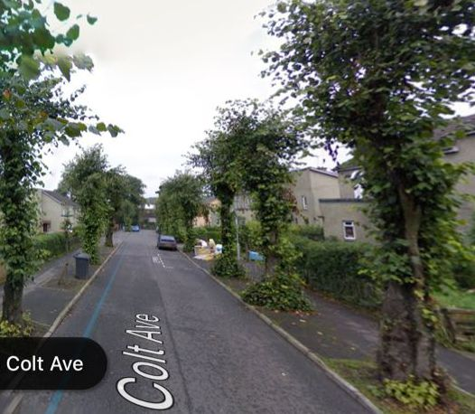 Gartsherrie House is long demolished but the driveway survives as Colt Avenue.