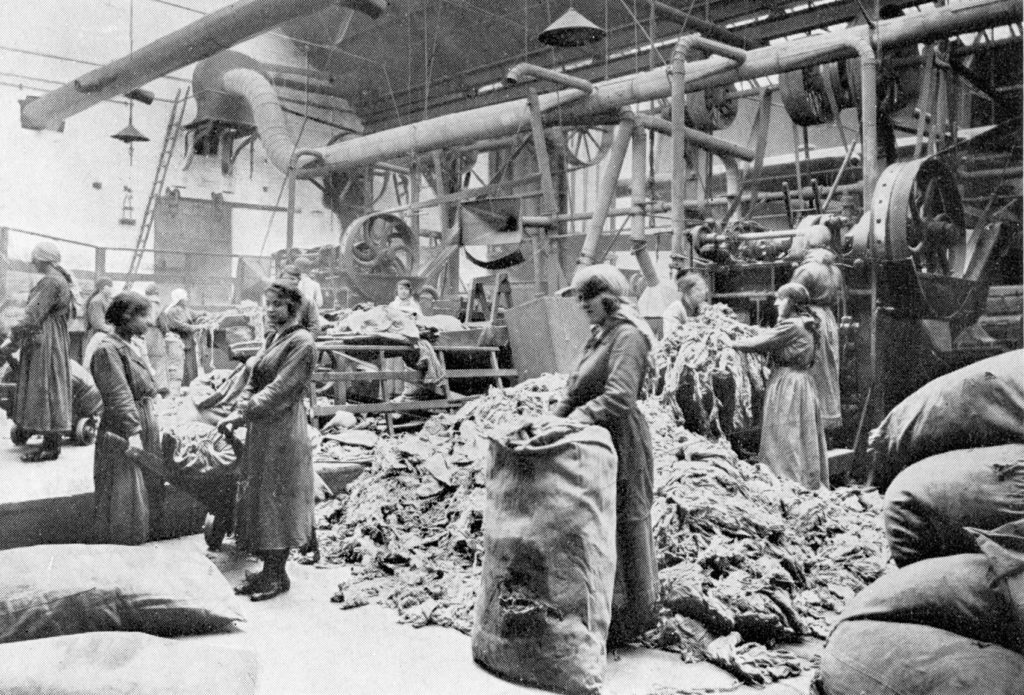 A rag-cutting room at Caldercruix Paper Mills, around 1920.